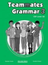 Teammates 3 A2 Grammar